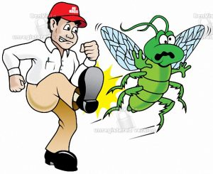 شركة-مكافحة-الحشرات-بالمدينة